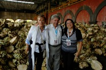 at Tequila distillery in Mexico with Giovanna Suzzi and Patricia Romano, yeast experts from Italy
